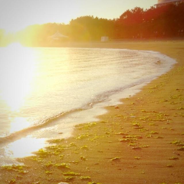 朝の海の空気って