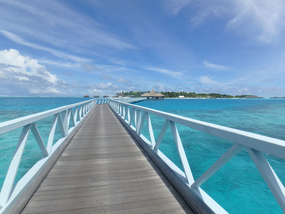 モルディブは12月~4月が乾季。その時期は、この桟橋付近に マンタがプランクトンを食べにくるのだとか。見たかったー!